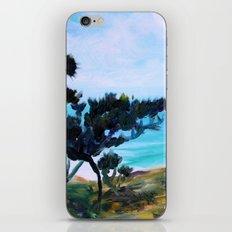 Fine, Fine Torrey Pine iPhone & iPod Skin