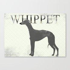 Whippet Dog  Canvas Print