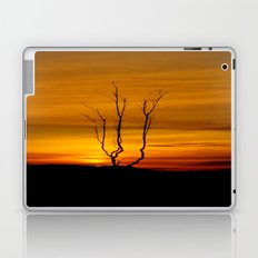 Lone tree sunset Laptop & iPad Skin