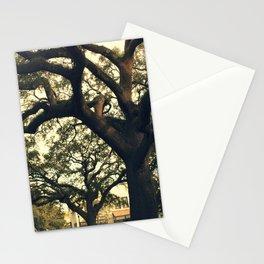 Savannah Live Oaks 2 Stationery Cards
