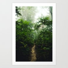 Pictured Rocks Pathway Art Print