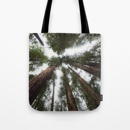 Redwood Portal - nature photography Tote Bag