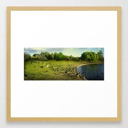 Duck Heaven Framed Art Print