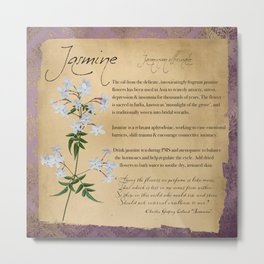 Herbal Apothecary: Jasmine Metal Print