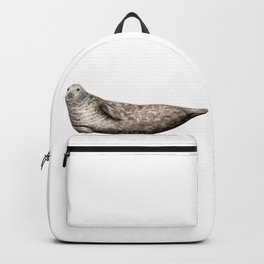 Grey Seal (Halichoerus grypus) Backpack