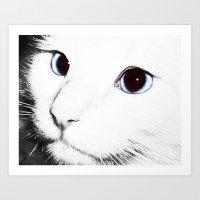 Blue Eyed Boy Art Print