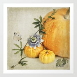 pumpkin & passiflora Art Print