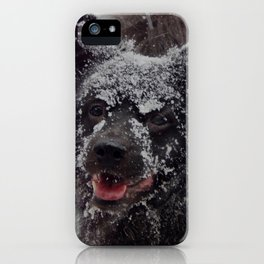 Snow dog! iPhone Case
