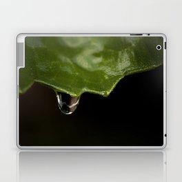 All The Raindrops Laptop & iPad Skin
