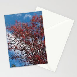 Menominee Red Stationery Cards