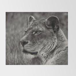Lioness Portrait Throw Blanket