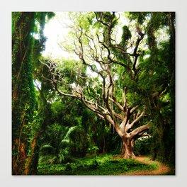 emerald days Canvas Print
