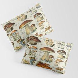 Mushrooms Vintage Scientific Illustration French Language Encyclopedia Lithographs Educational Pillow Sham