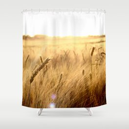 Golden wheat in the sunset Shower Curtain