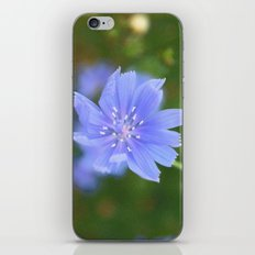 cornflower blue iPhone & iPod Skin