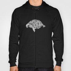 Little tortoise Hoody