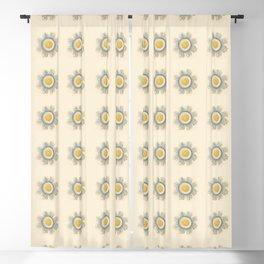 Ernst Haeckel Art Illustration Blackout Curtain
