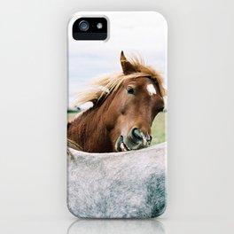 Iceland - Horse love (Leica M3 & Kodak film) iPhone Case