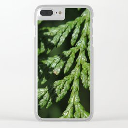 Pointe Evergreen 74 Clear iPhone Case