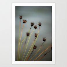 A Pakenham Weed Art Print