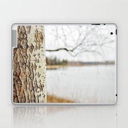 Aspen bark and gray lake Laptop & iPad Skin