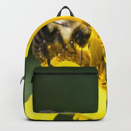 Bumble Bee on Oxeye Sunflower Backpack