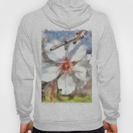Almond Blossom Study Watercolor Hoody