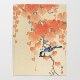 Colorful bird sitting on a tree branch - Japanese vintage woodblock print art  Poster