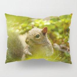 Squirrel! Pillow Sham