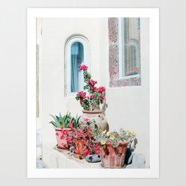 Santorini Flowers Art Print