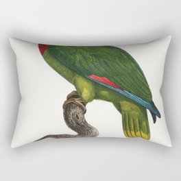 The Red-Necked Amazon Amazona arausiaca from Natural History of Parrots (1801-1805) by Francois Leva Rectangular Pillow
