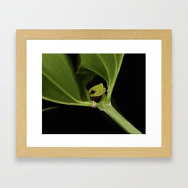 Little Frog Framed Art Print