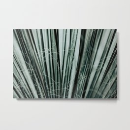 Botanical Conservatory Metal Print
