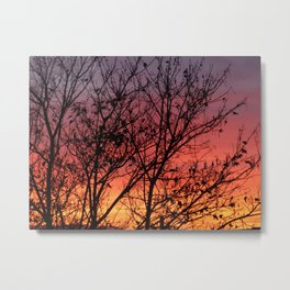 Tree and sunset Metal Print