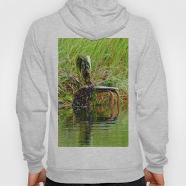 Seaweed Covered Chair Hoody