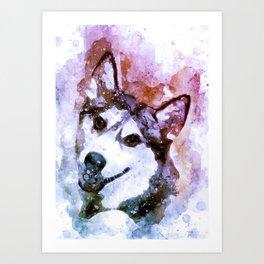Tika'ani our Siberian Husky Art Print