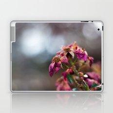 Dried Roses Laptop & iPad Skin