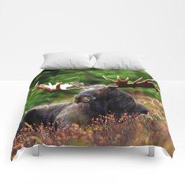 Relax Moose Comforters