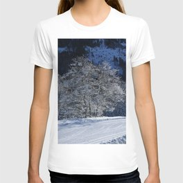 Hoarfrost And Snow T-shirt