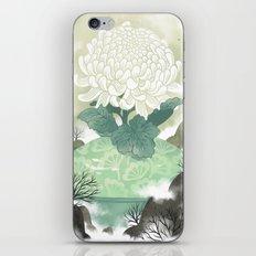 Celadon iPhone & iPod Skin