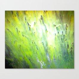 Soul Bath Canvas Print