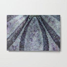 Sand Dollar Macro Abstraction Metal Print