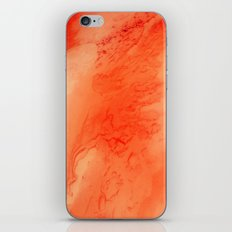 pt. 1 iPhone & iPod Skin