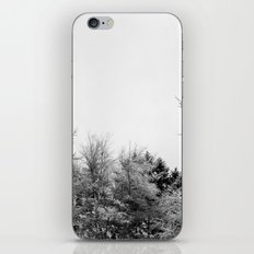 Snow Branches iPhone & iPod Skin