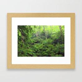 Forest 8 Framed Art Print