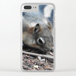 Snacktime Squirrel  Clear iPhone Case