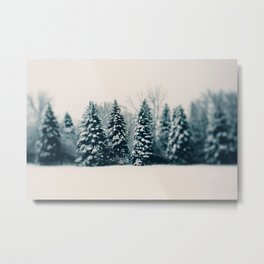 Winter & Woods Metal Print
