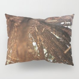 Never Stop Looking Up (Tree 1 detail) Pillow Sham