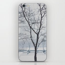 Winter View iPhone Skin