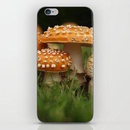 Amanita Colony... iPhone Skin